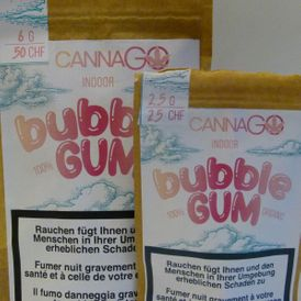 CBD Indoor Bubble Gum